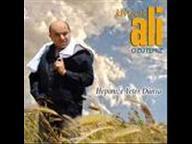 Kivircik Ali - Tedirgin Halim 2008