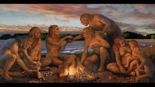 Tarih Öncesi İnsanlar (Belgesel) İnsan evrimi