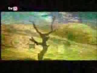 Zeynel - Bul Getir